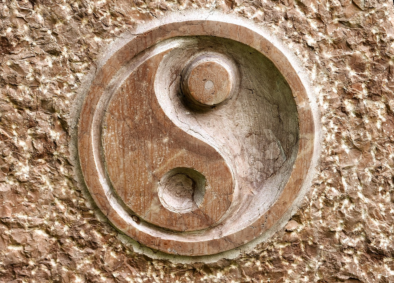Yin and Yang, what could the symbol mean?